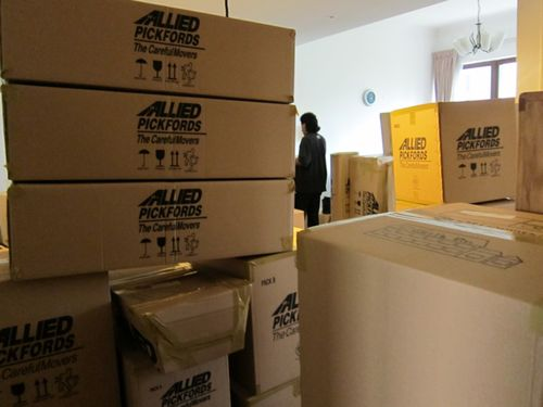 Maze of boxes