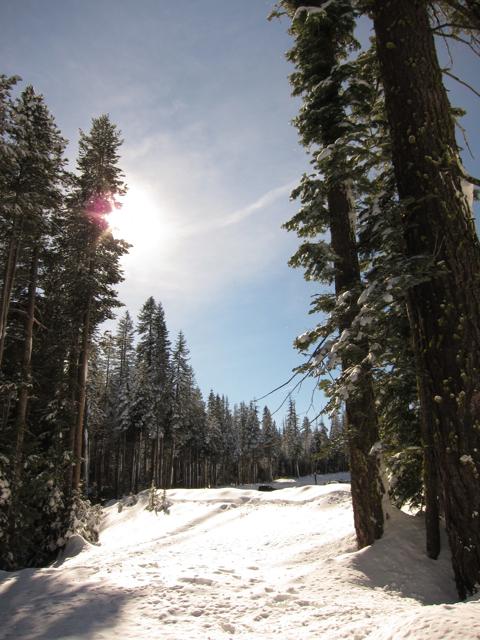 Beautiful weather in the Sierra